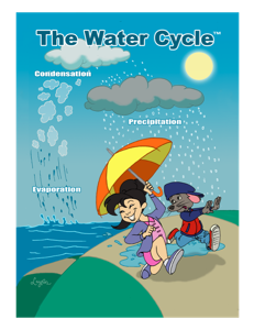 03 The Water Cycle